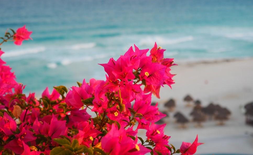 wakacje w cancun