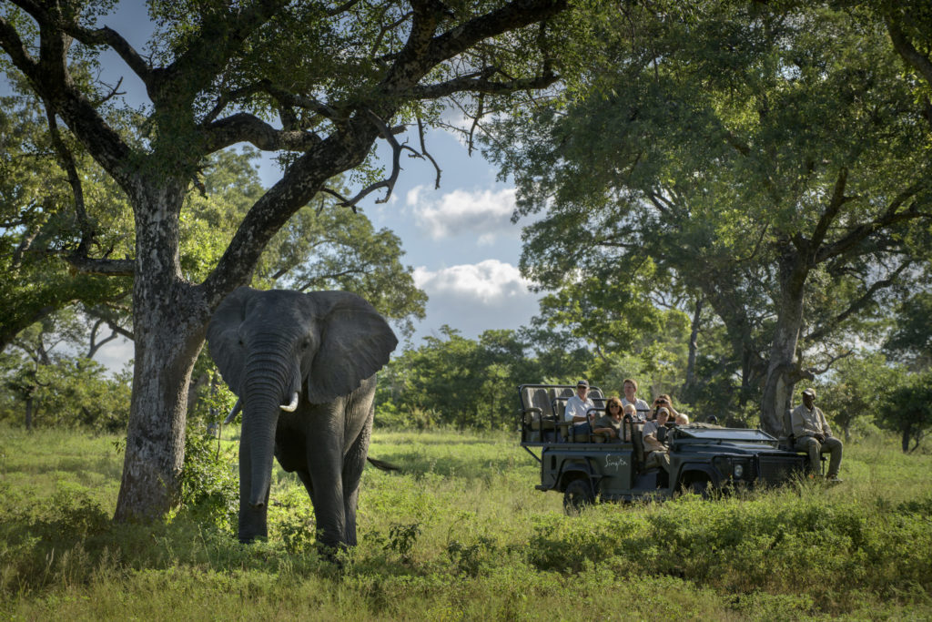 singita safari w tanzanii