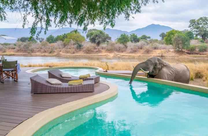 Chongwe House, luksusowe lodge w Afryce, safari w zambii