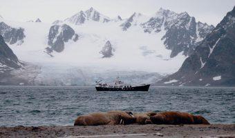 Svalbard – rejs po arktycznym krańcu świata