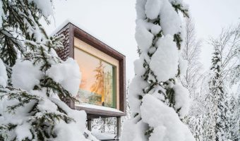 Arctic Tree House
