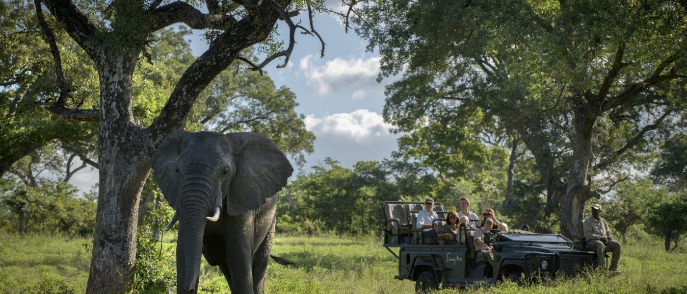 RPA i Zimbabwe – safari na wyłączność