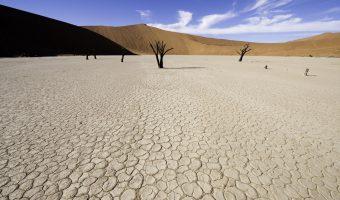 Od Wybrzeża Szkieletowego po wydmy Mozambiku