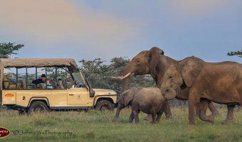 Kenia à la Hemingway