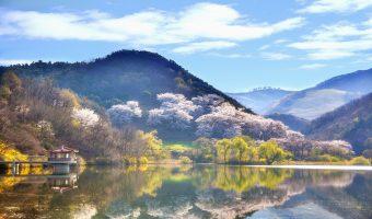 Korea z wyspą Jeju w 14 dni