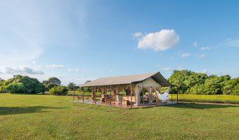 Corocora Camp Los Llanos