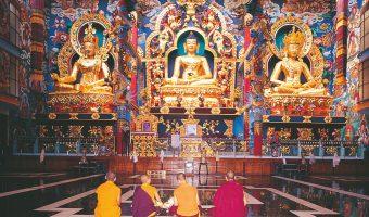 Pałace, świątynie i dżungla - Karataka, nieznane oblicze Indii
