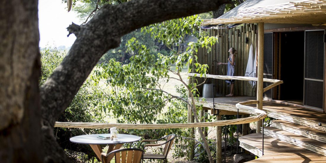 Wilderness Safaris Mombo Camp