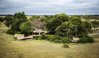 Wilderness Safaris Mombo Camp